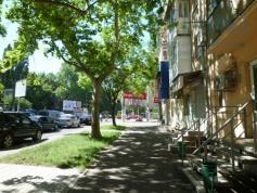 Продажа Офис с ремонтом Приморский район Сегедская/Армейская